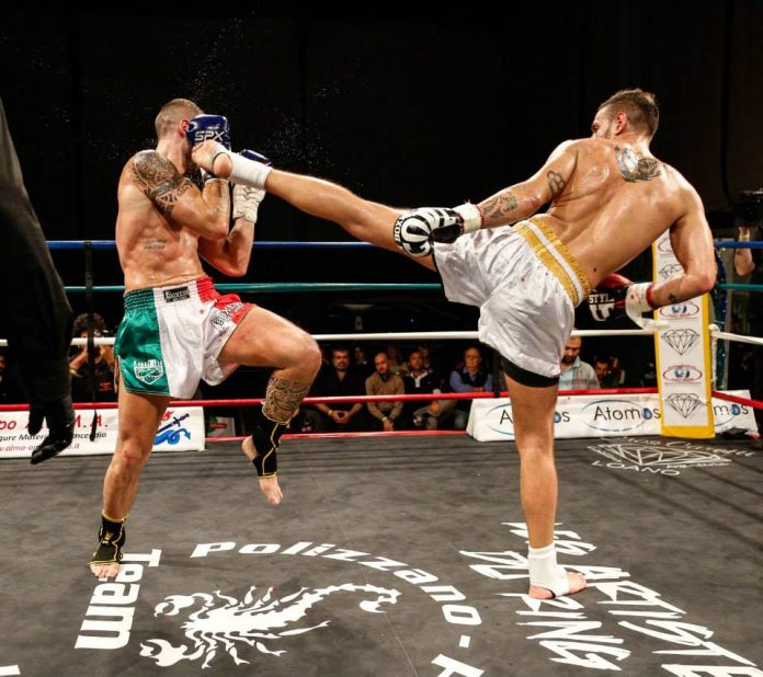 international-fight-show
