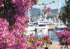Yacht & Garden